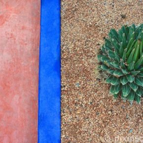 jardin-majorelle-yves-saint-laurent-marrakesch-2