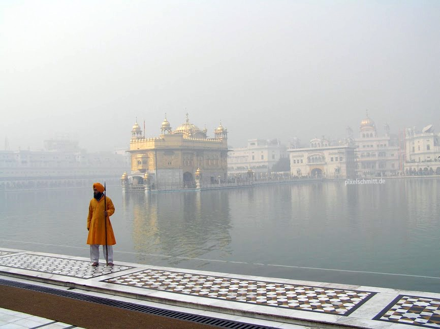 [Indien] Hari Mandir – der goldene Tempel in Amritsar #tbt
