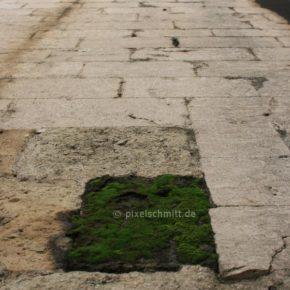 Sehenswuerdigkeiten-in-Lissabon-6764
