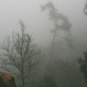tagesausflug-nach-sintra-im-nebel-06