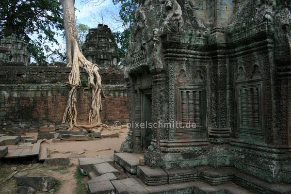 Tempel Ruine Angkor Wat Kambodscha