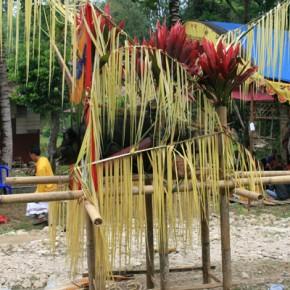 blutige-zeremonie-in-sulawesi-11