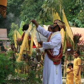 blutige-zeremonie-in-sulawesi-15