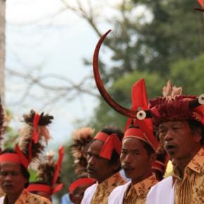 blutige-zeremonie-in-sulawesi-18