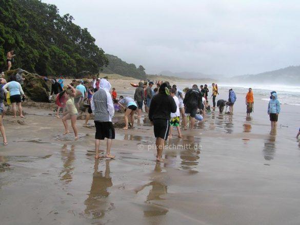Hot Water Beach: Ganz schön viel los