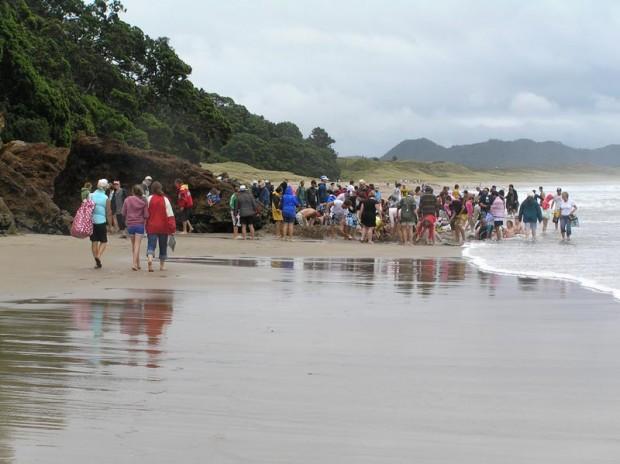 Hot Water Beach - und die Massen graben nach heißem Wasser