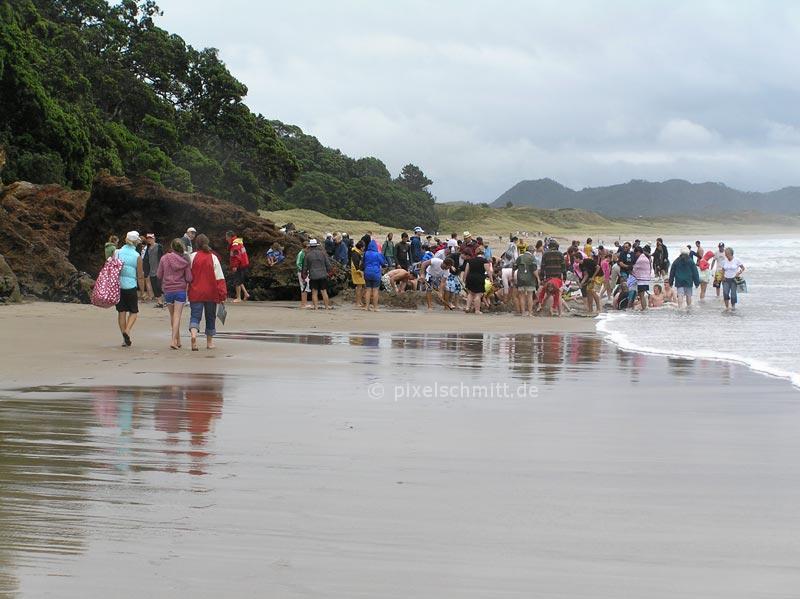 Hot Water Beach in Neuseeland: Hier sprudelt heißes Wasser aus dem Sand