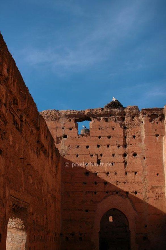 stoerche-in-marrakesch-02