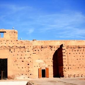 stoerche-in-marrakesch-06