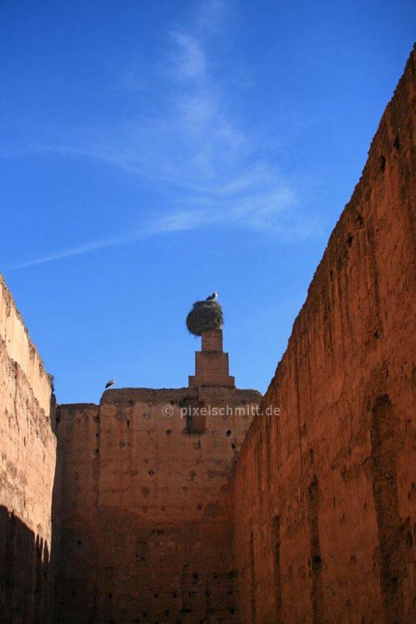 stoerche-in-marrakesch-09