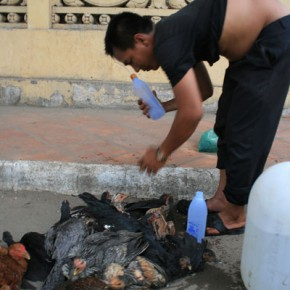 reisebericht-kambodscha-blogimg_1124
