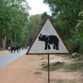 reisebericht-kambodscha-blogimg_1531