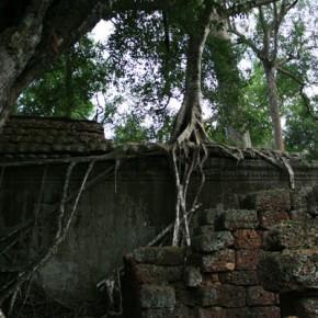 reisebericht-kambodscha-blogimg_2310