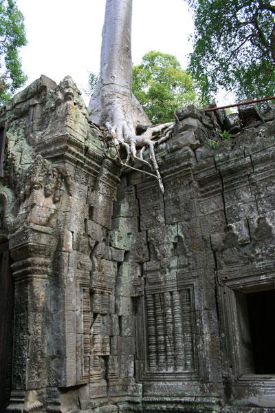 reisebericht-kambodscha-blogimg_2327