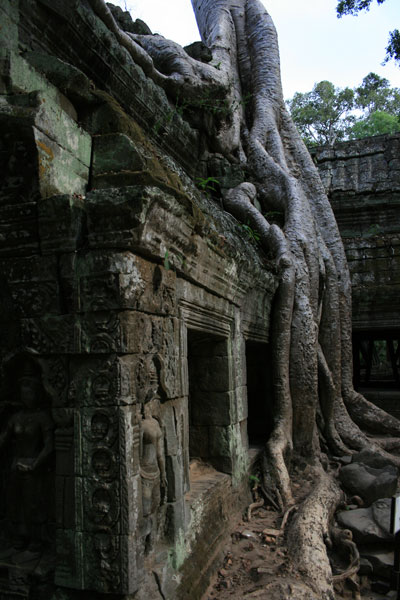 reisebericht-kambodscha-blogimg_2361