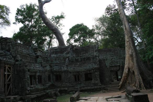 reisebericht-kambodscha-blogimg_2372
