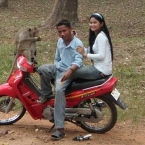 reisebericht-kambodscha-blogp4030047