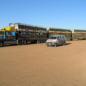 wicked-camper-roadtrain-lkw-australien
