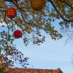 Fototour-Erlangen-1582