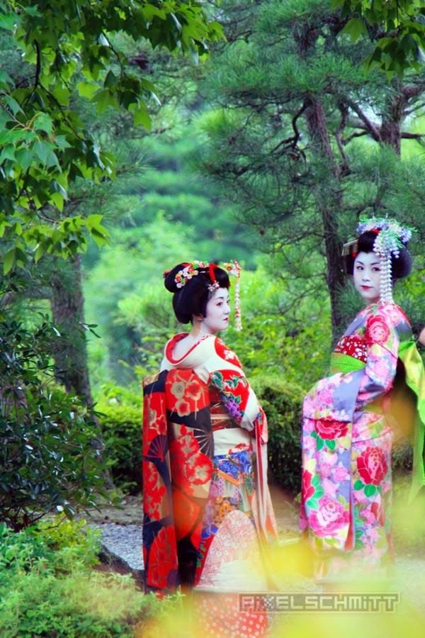 Geishas in einem Park in Kyoto