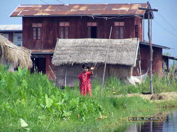 reisebericht-myanmar-inle-see-schwimmende-felder-06