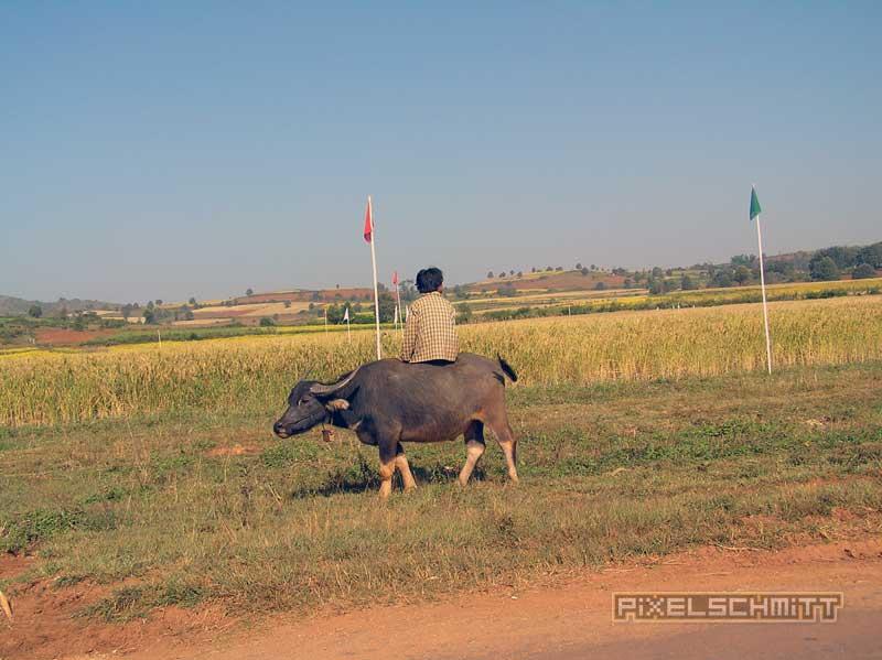 Reisebericht Myanmar 2004: Im schrottreifen Postauto vom Inle-See nach Mandalay