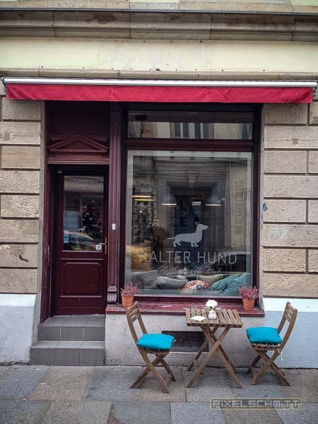 kalter-hund-dresden-neustadt-foto-streetart-5122