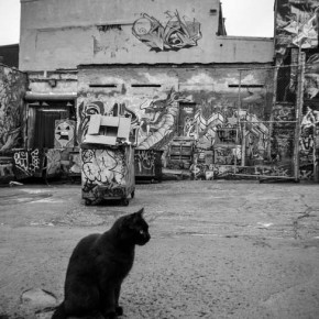 5-pointz-new-york-graffiti-farewell-5876
