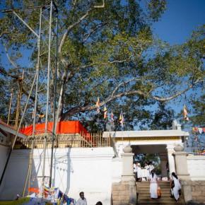 anuradhapura-tempel-sri-lanka-2
