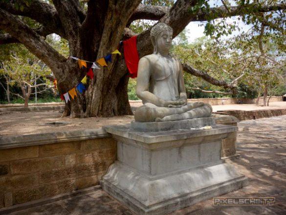 anuradhapura-tempel-sri-lanka-20