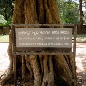 anuradhapura-tempel-sri-lanka-30