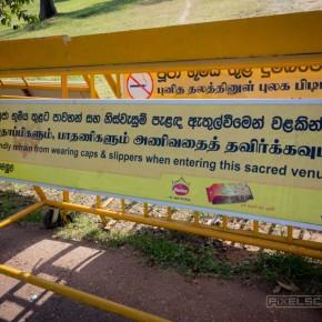 anuradhapura-tempel-sri-lanka-4