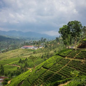 how-to-climb-adams-peak-sri-lanka-sri-pada-12
