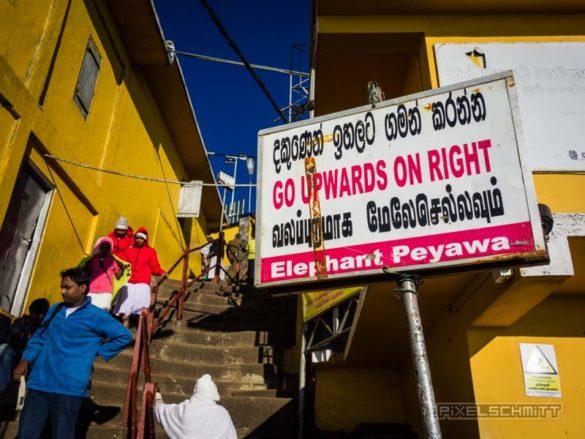 how-to-climb-adams-peak-sri-lanka-sri-pada-34
