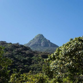 how-to-climb-adams-peak-sri-lanka-sri-pada-43