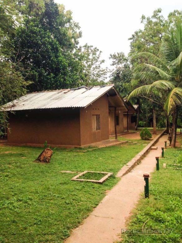 Udawalawe-Pokuna-Safari-Eco-Lodge-Sri-Lanka-10