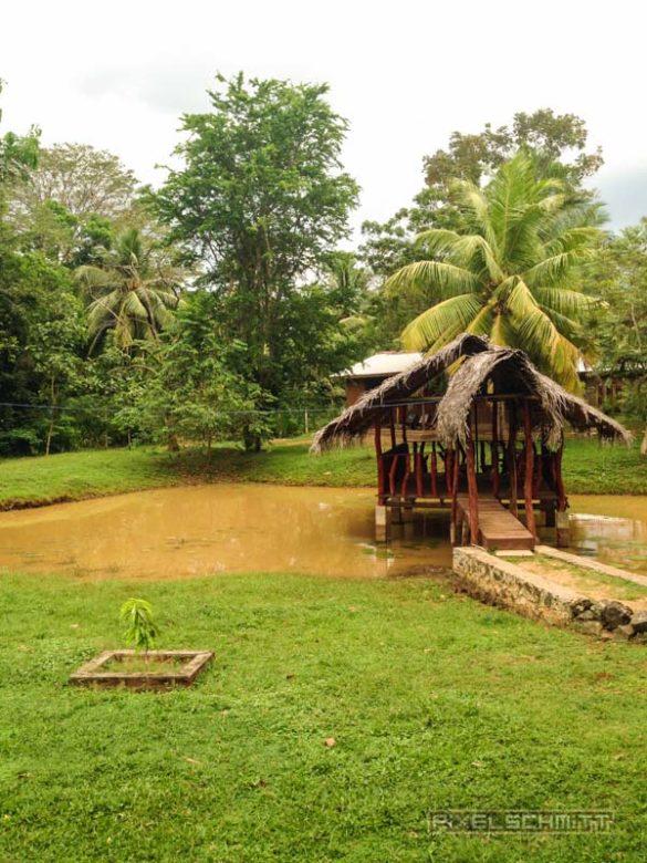 Udawalawe-Pokuna-Safari-Eco-Lodge-Sri-Lanka-12