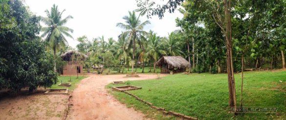 Udawalawe-Pokuna-Safari-Eco-Lodge-Sri-Lanka-13