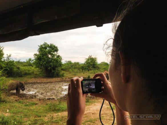 Udawalawe-Pokuna-Safari-Eco-Lodge-Sri-Lanka-14