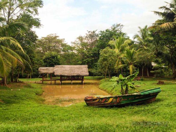 Udawalawe-Pokuna-Safari-Eco-Lodge-Sri-Lanka-16