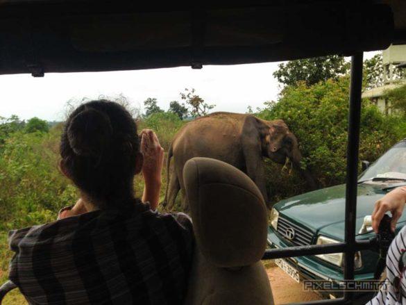 Udawalawe-Pokuna-Safari-Eco-Lodge-Sri-Lanka-4