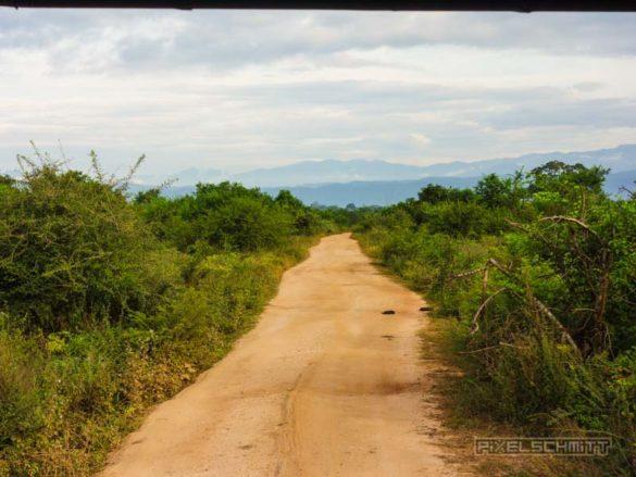uda-walawe-national-park-safari-15