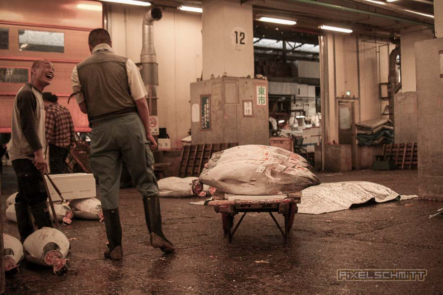 Fischmarkt Tokyo: Ein Besuch bei den Riesen-Thunfischen