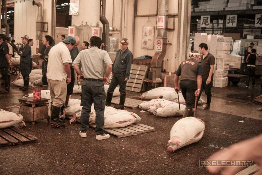fischmarkt-tokyo-15