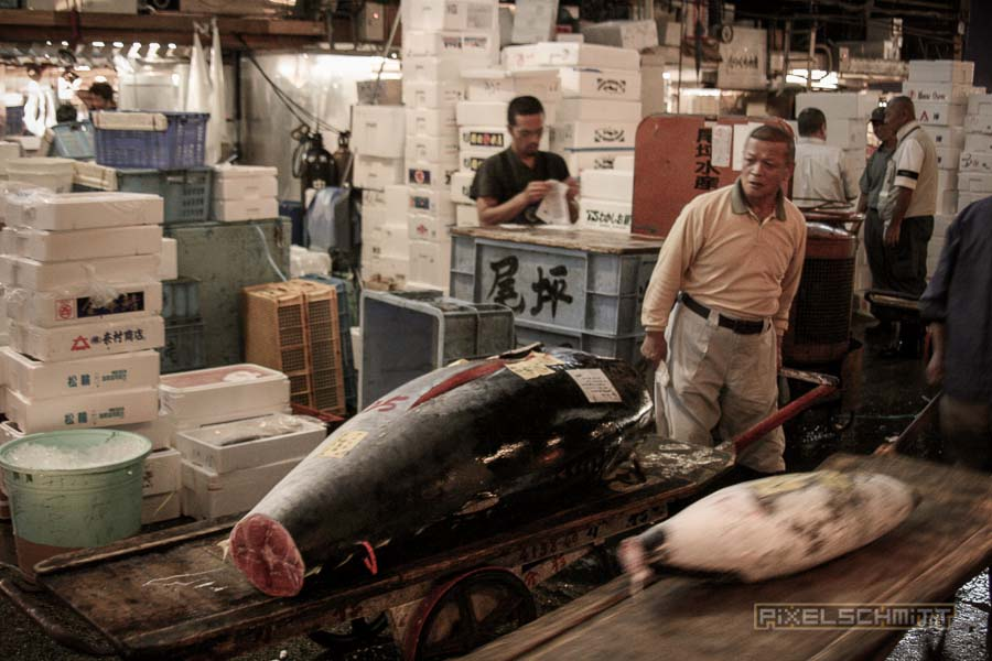 fischmarkt-tokyo-18