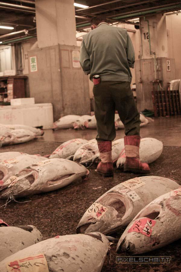 fischmarkt-tokyo-6