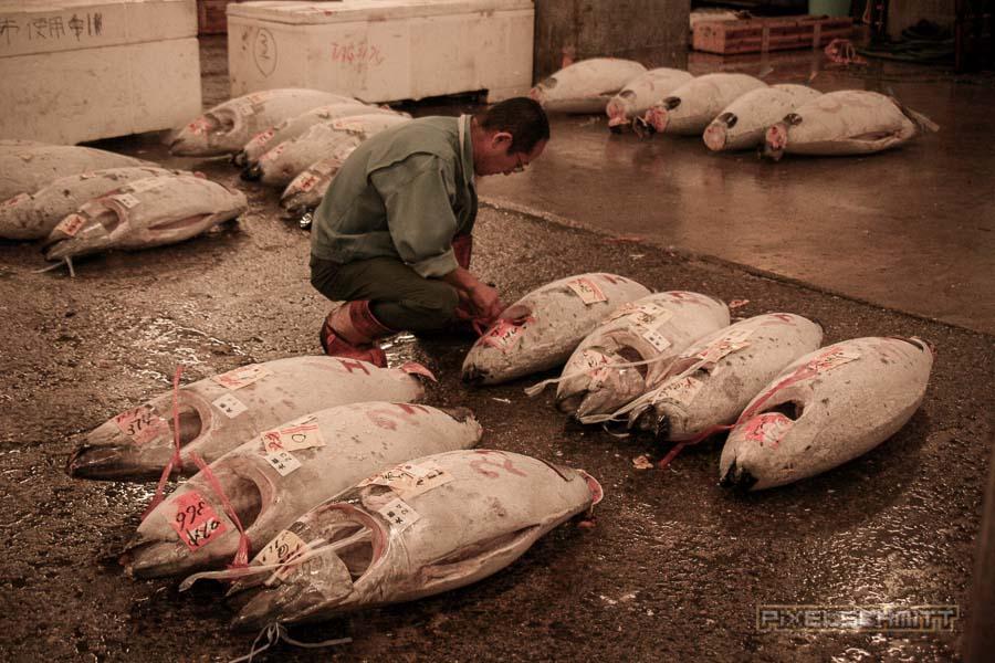 fischmarkt-tokyo-7