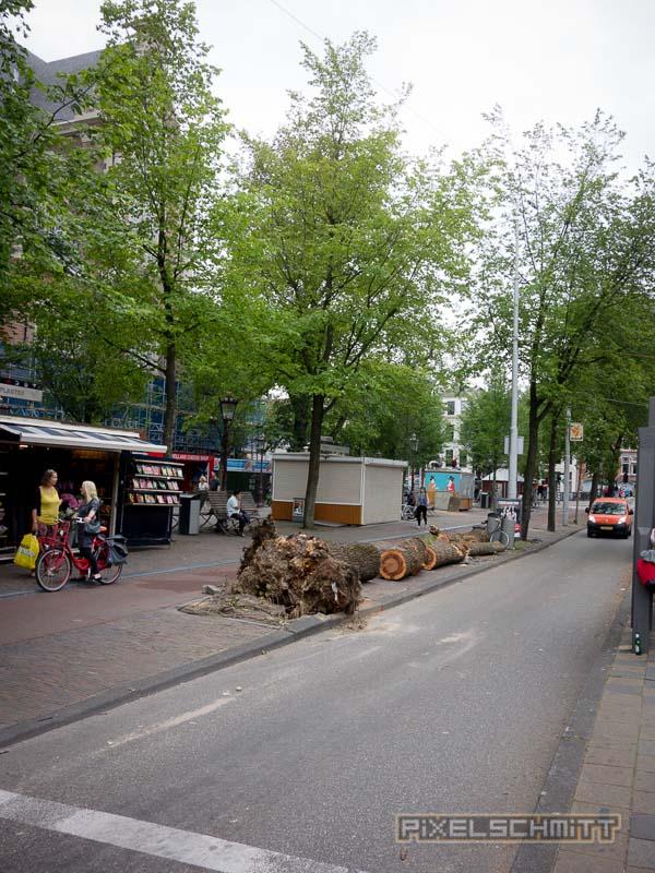 orkan-amsterdam-regenschirme-33
