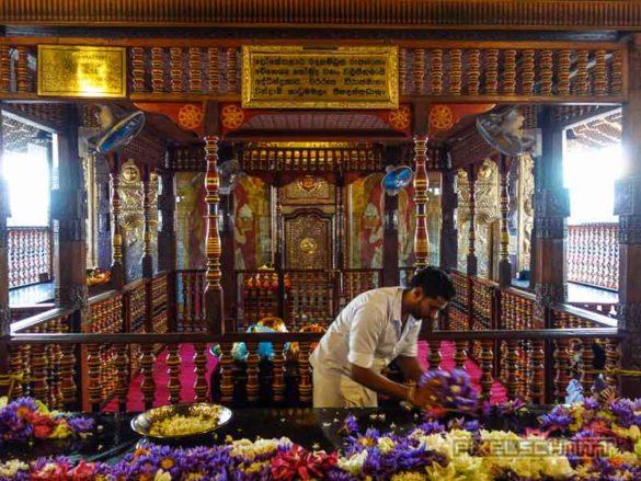 kandy-sri-lanka-11-zahntempel