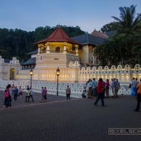 kandy-sri-lanka-20-zahntempel